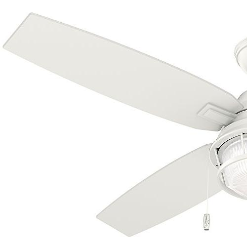 Hunter Ceiling Fan with Large,
