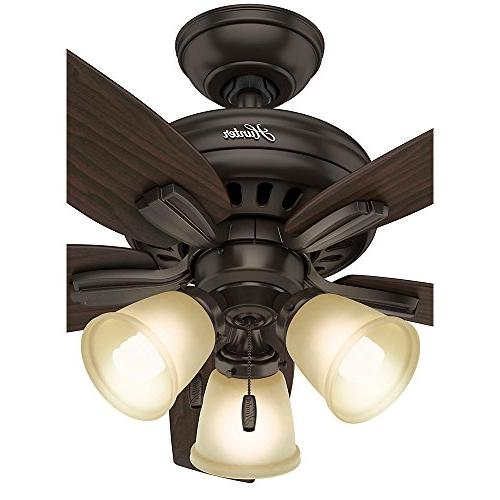 Hunter Fan Ceiling Fan, Bronze
