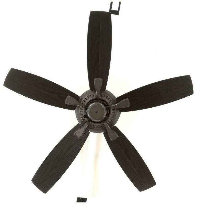 Natural Iron Fan With Adaptable Black